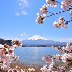 Région du Mont Fuji
