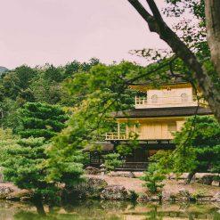 Pavillon d'or (Kinkaku-ji)