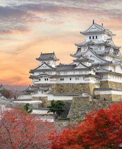 Château de Himeji 姫路城