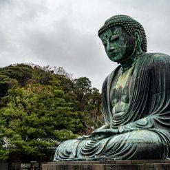 Temple Kotoku-in 高徳院